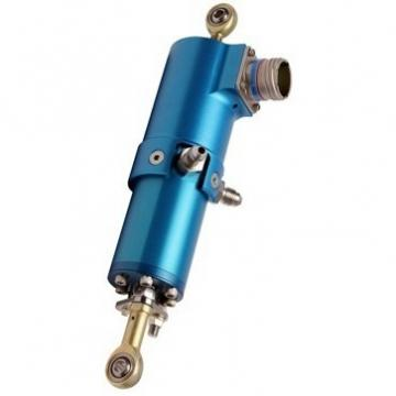 10ton 50mm Vérin hydraulique avec écrou de sécurité  Cilindro hidráulico