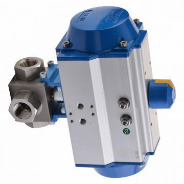 100ton 150 mm Vérin hydraulique avec écrou de sécurité Cilindro hidráulico