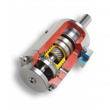 """Vérin hydraulique double action 40x20 course 200 cylinder double effet 1/4"""""""