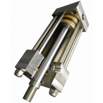 20ton 100 mm Vérin hydraulique avec écrou de sécurité  Cilindro hidráulico