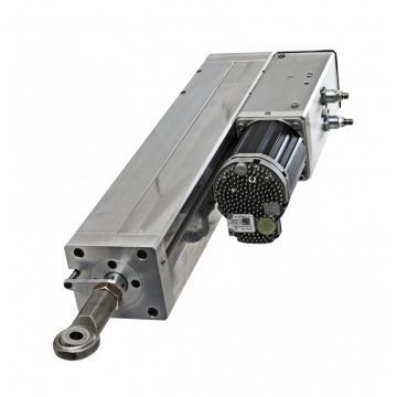 30 ton 100 mm Vérin hydraulique avec écrou de sécurité  Cilindro hidráulico