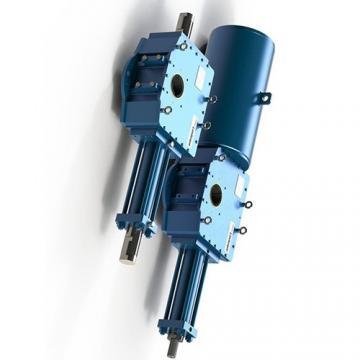 50ton 100mm Vérin hydraulique avec écrou de sécurité  Cilindro hidráulico
