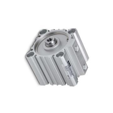 Rodless Cylindre DE/2000-25-00060-0000-000000 Parker 62856134/25916 * NEUF *