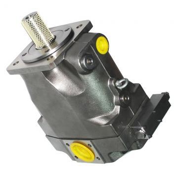 Genuine PARKER/JCB Pompe Hydraulique Avec Gear 20/906100 MADE in EU